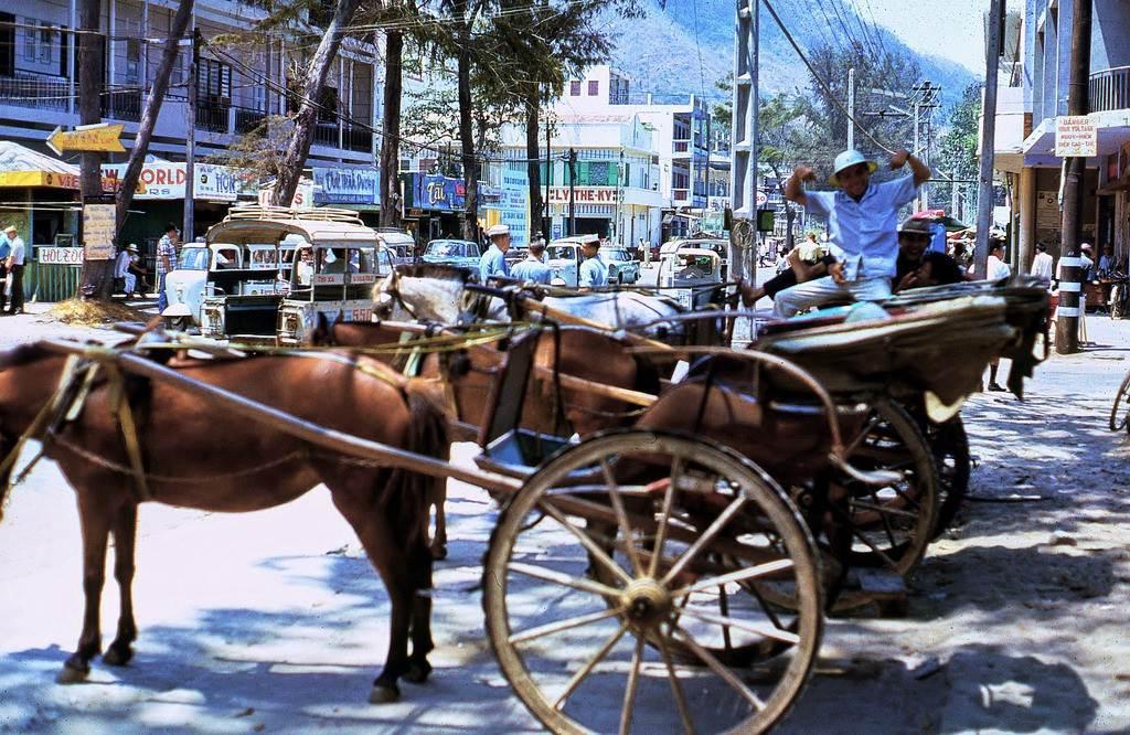 Tác giả bộ ảnh Terry Maher tạo dáng chụp ảnh bên xe ngựa ở đường Trần Hưng Đạo.