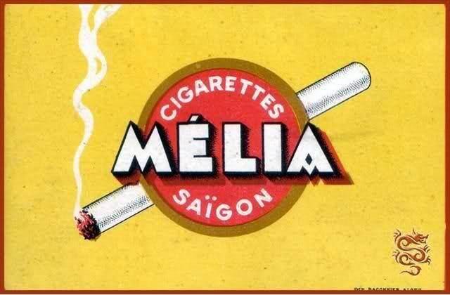 """Mélia """"vàng"""" Mélia """"vàng"""", còn gọi là """"Mélia Jaune"""""""