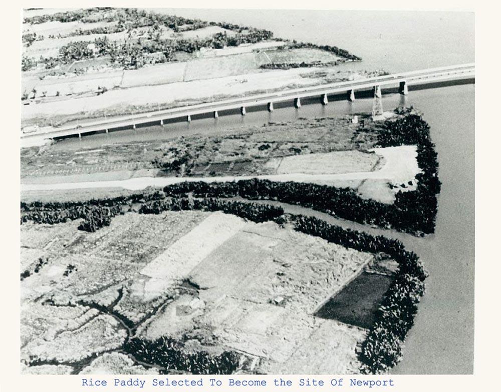 Ở dưới cầu Sài Gòn bấy giờ là những ruộng lúa chưa được san lấp