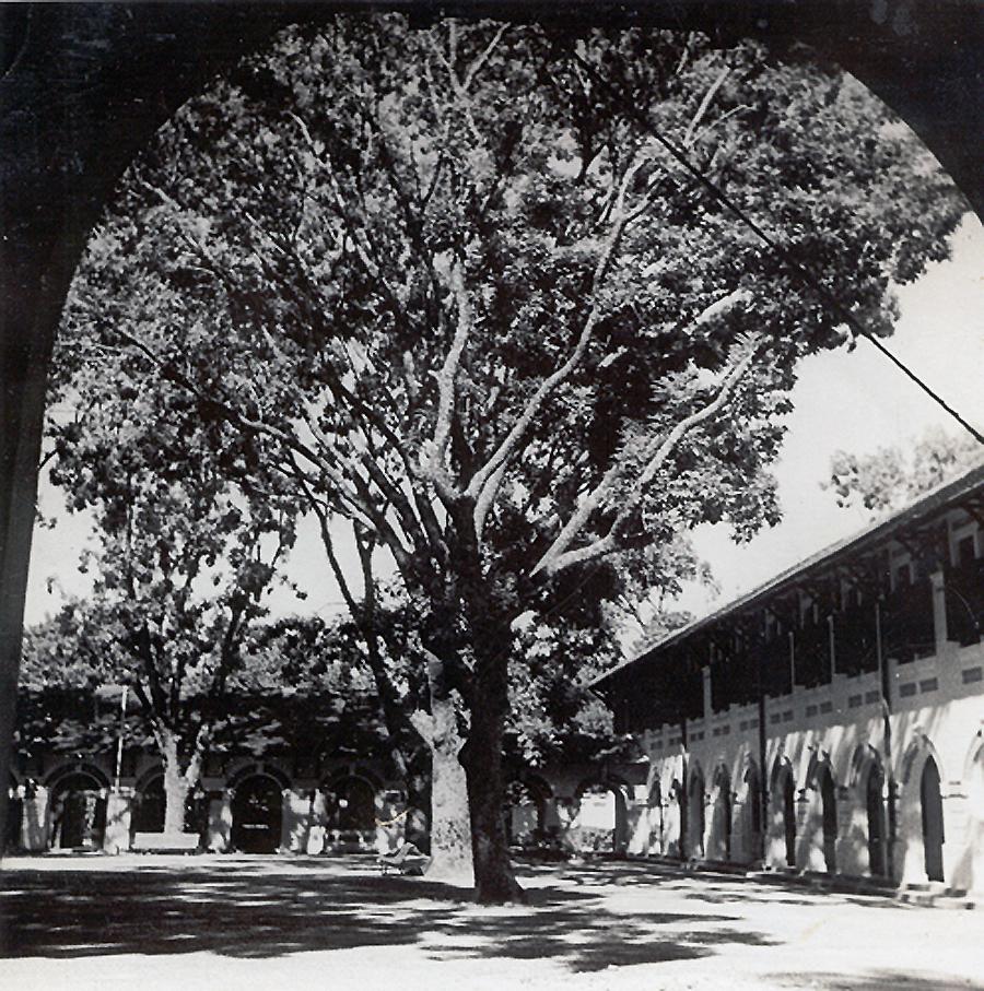 Sân trường Marie Curie ngày xưa