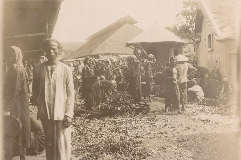 Chợ hoa Tết Sài Gòn 1902. Phía xa là dãy phố trên đường Nguyễn Huệ ngày nay.