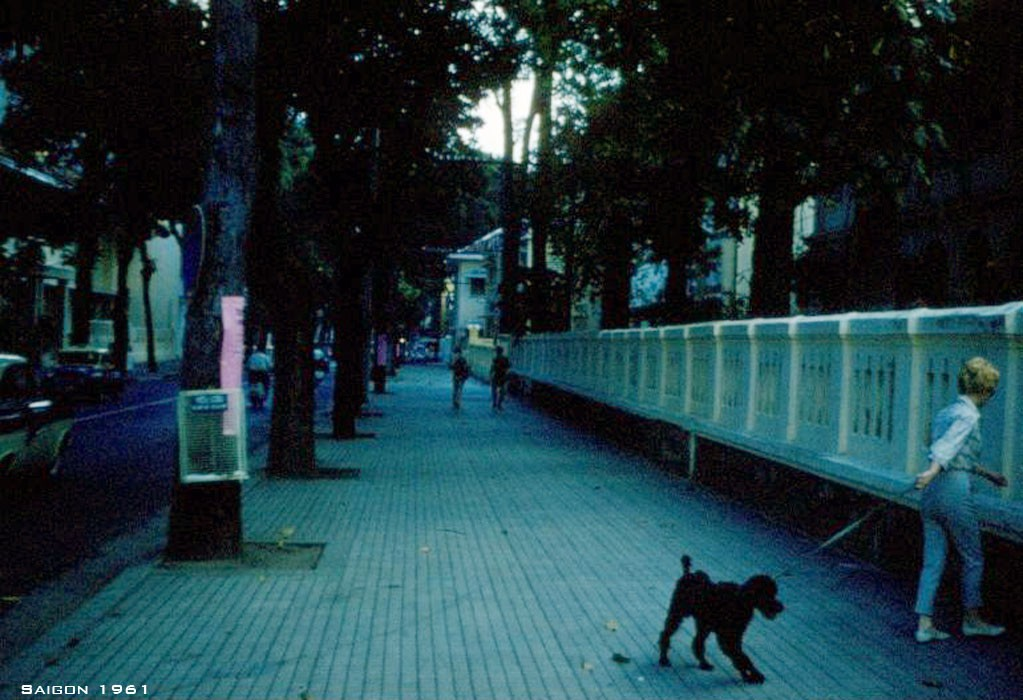 Người phụ nữ Pháp dắt chύ chό giống Poodle đi dạo trên đường Tự Do (nay là đường Đồng Khởi)